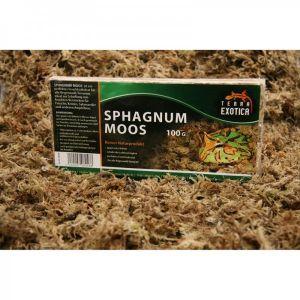 Sphagnum Moos 100g