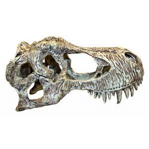 Komodo T-Rex skull S
