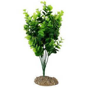 Pembe Bush 9x7x30 cm