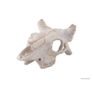 Exo Terra Buffalo Skull S