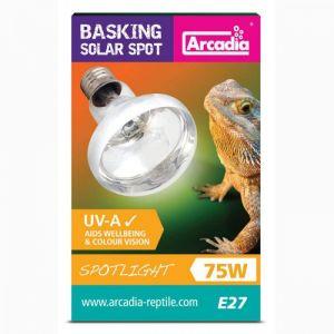 Arcadia Barsking solar lamp Spotlight 75W