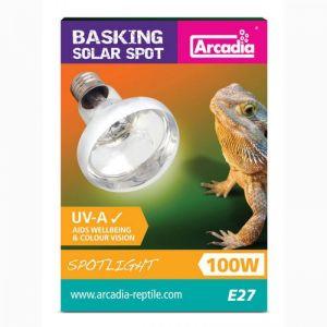 Arcadia Barsking solar lamp Spotlight 100W