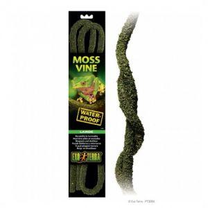 Exo Terra Moss Vine Large