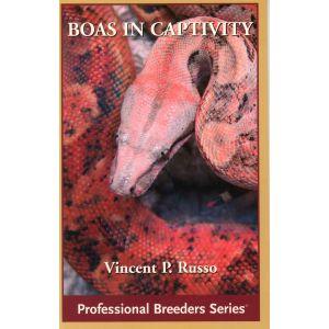 ECO Boas in captivity