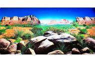 Reptiles planet ørken baggrund 60 cm høj