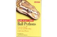 Kongepython bog af Barrons RKG