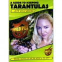 Guide to keeping tarantulas DVD