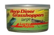 Lucky Reptile Herp Diner, Græshopper 35g