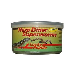 Lucky Reptile Herp Diner, Superworms 35g