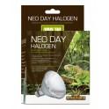 Neo Day Halogen 100W
